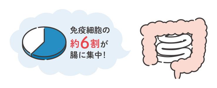 【POINT-1】腸は実質体の外側。免疫細胞が外敵と闘う最前線